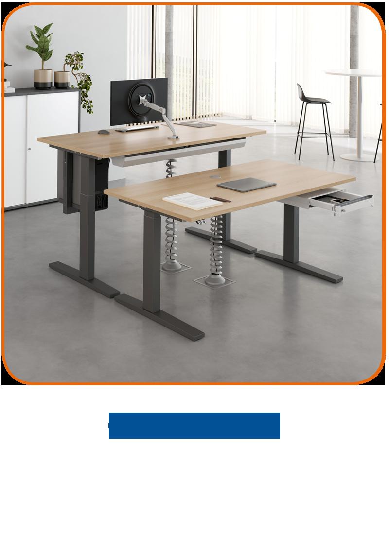 CETASTO